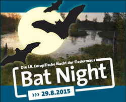 Bat Night Noctalis Fledermausexkursion