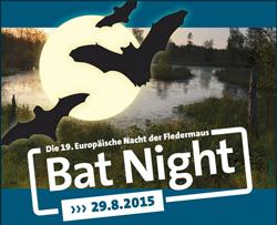 Bat Night Noctalis Fledermausexkursion