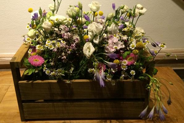 Blumen in Kiste