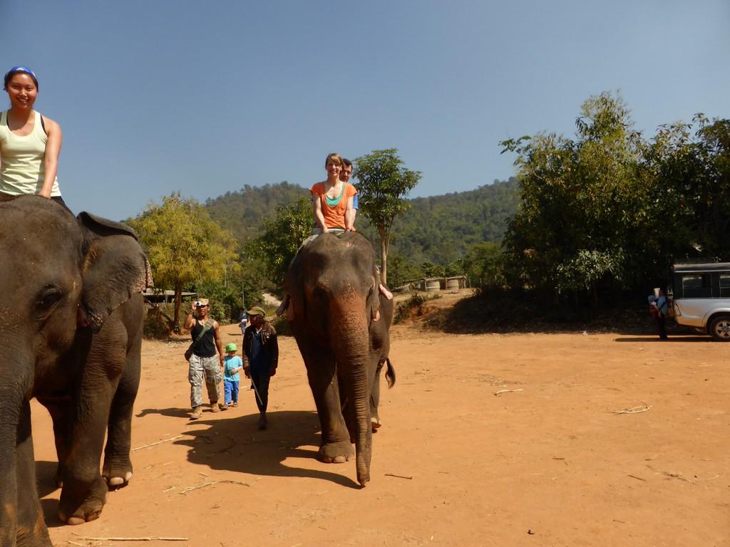 Wir auf Elefant