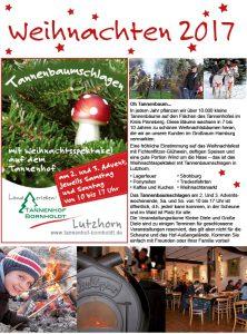 Tannbaum schlagen Weihnachtsbaum selber schlagen Bornholdt