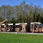 Norddeutschland: 8 Ausflüge für die Sommerferien