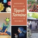 November 2018: Tipps und Termine