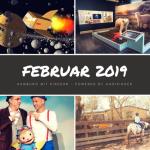 Tipps und Termine: Februar 2019